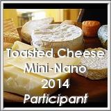 mininano-participant-2014